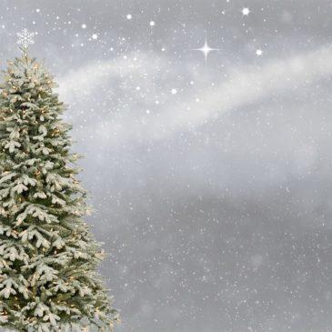 Noël 2018 : où rencontrer Yoëlys ?